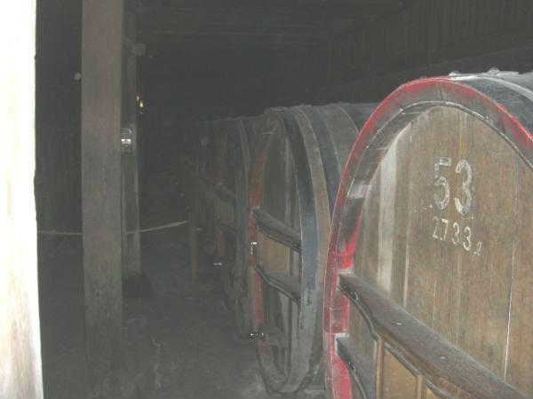 昔のワイン貯蔵庫 ちょっと暗いけど、大きな樽がカッコいい!